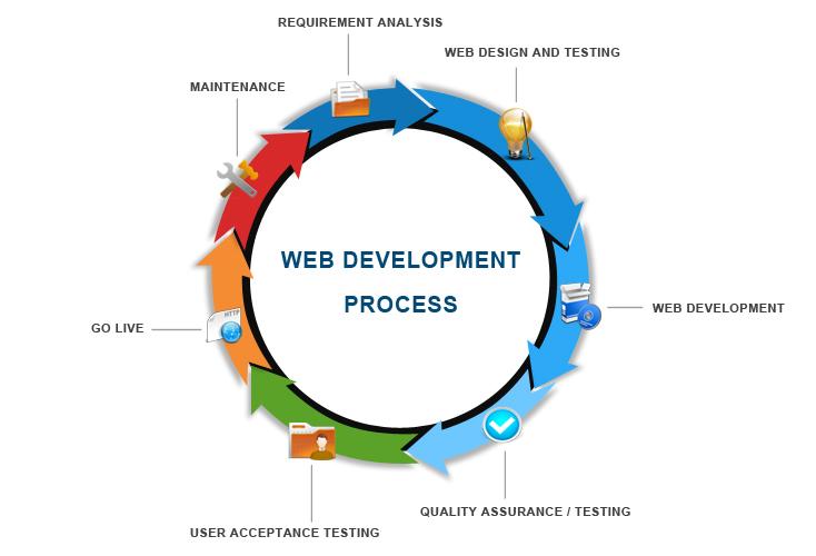 Web Development   Zindagi Services